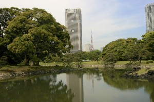 The garden, with the Tokyo tower in the distance