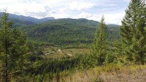Dog creek valley