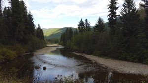 Another view of the Kettle River