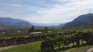 View of the Okanagan