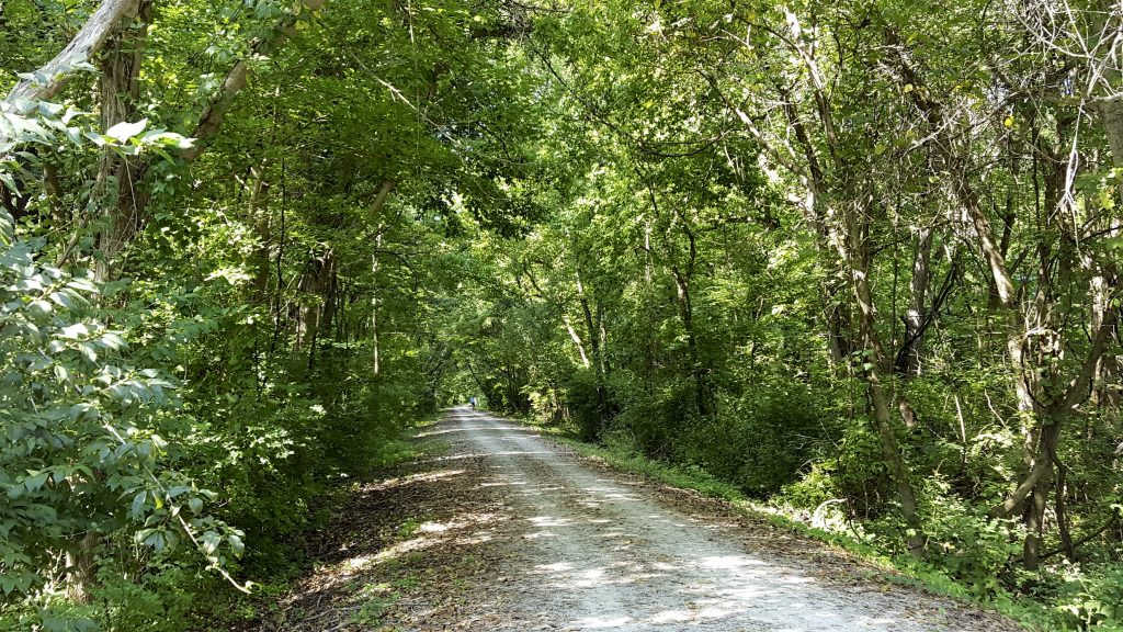 KTY trail